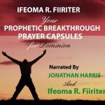 Your Prophetic Breakthrough Prayer Capsules for Dominion AudioBook